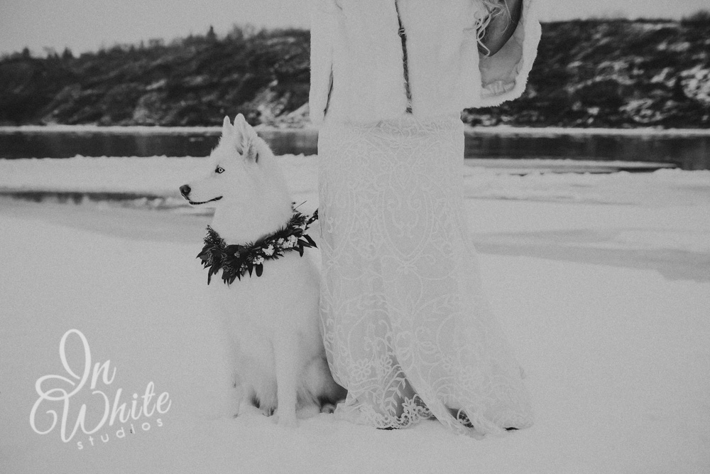 Edmonton Wedding Photography 4.jpg