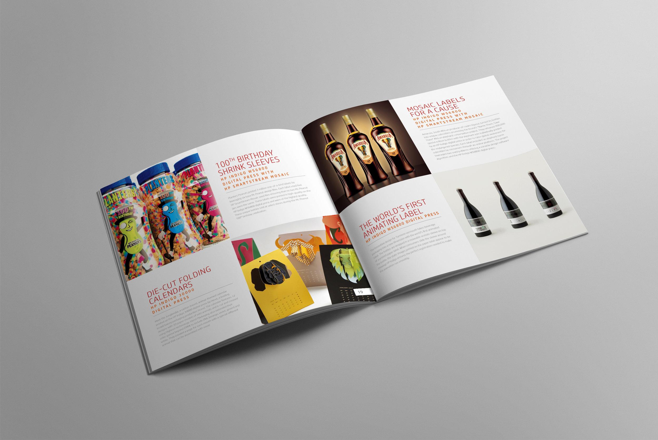GSB211773_Booklet_Brandland_Case_Study_Spread.jpg