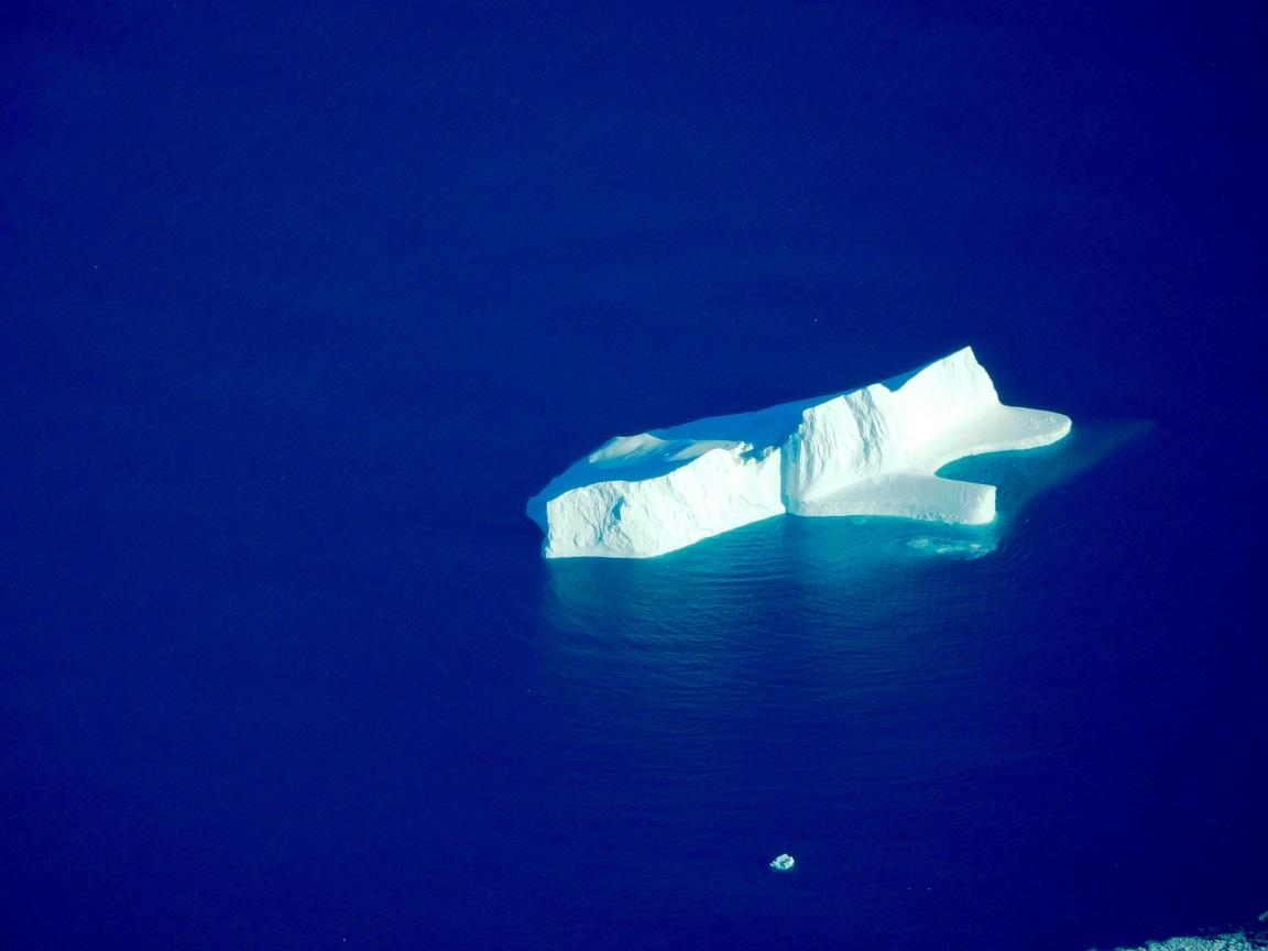 Hundreds of large Icebergs
