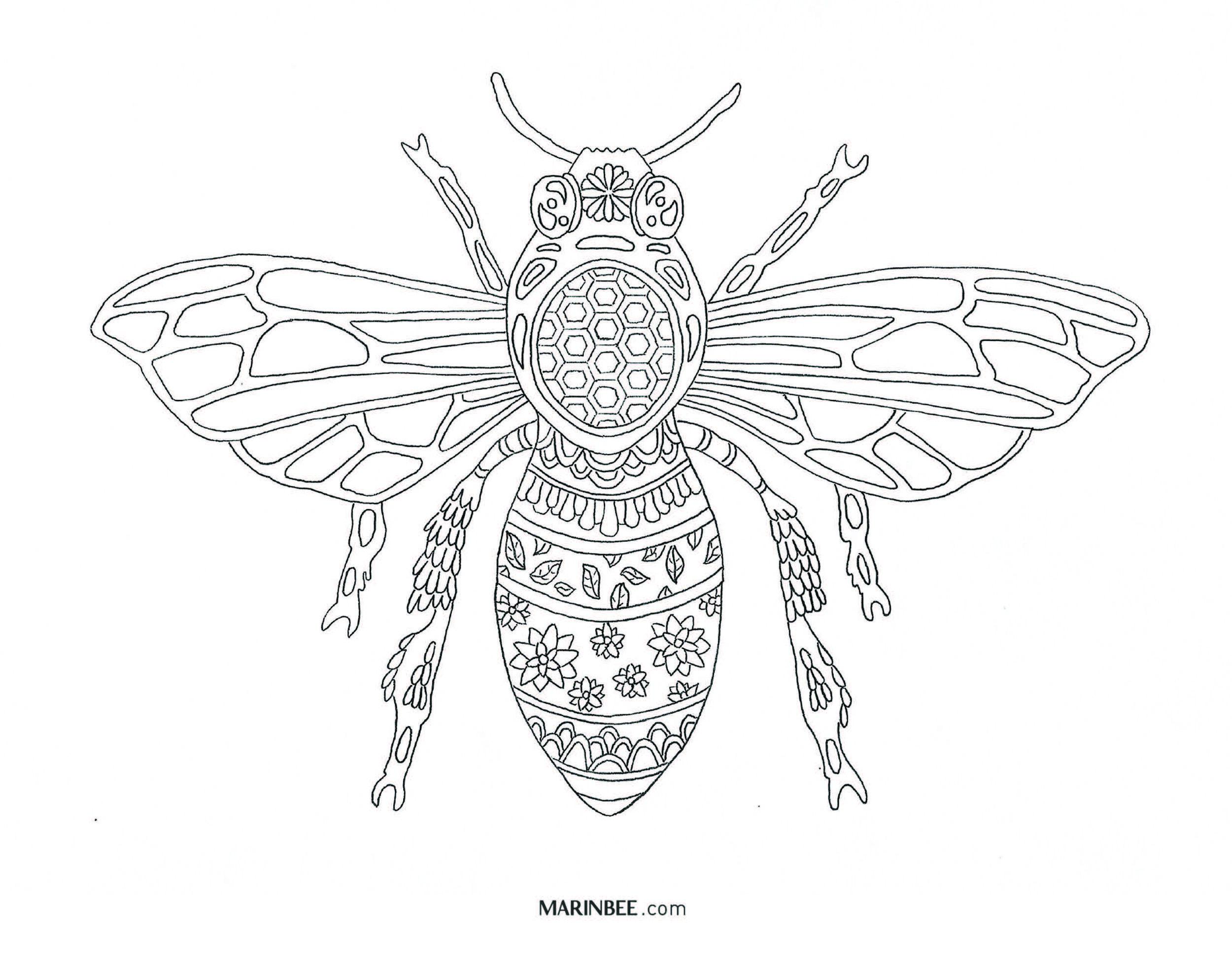 Marin Bee Color Me Bee-utiful