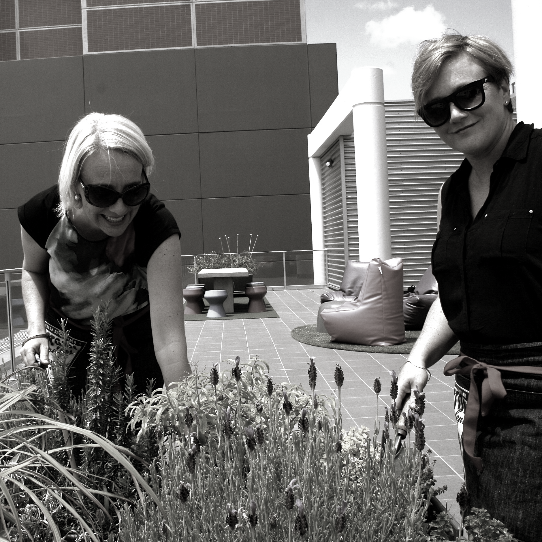justine and fellow Director Jackie Sargeant working on an nstall of anedible garden and balcony fitout for NSW Health Pathology