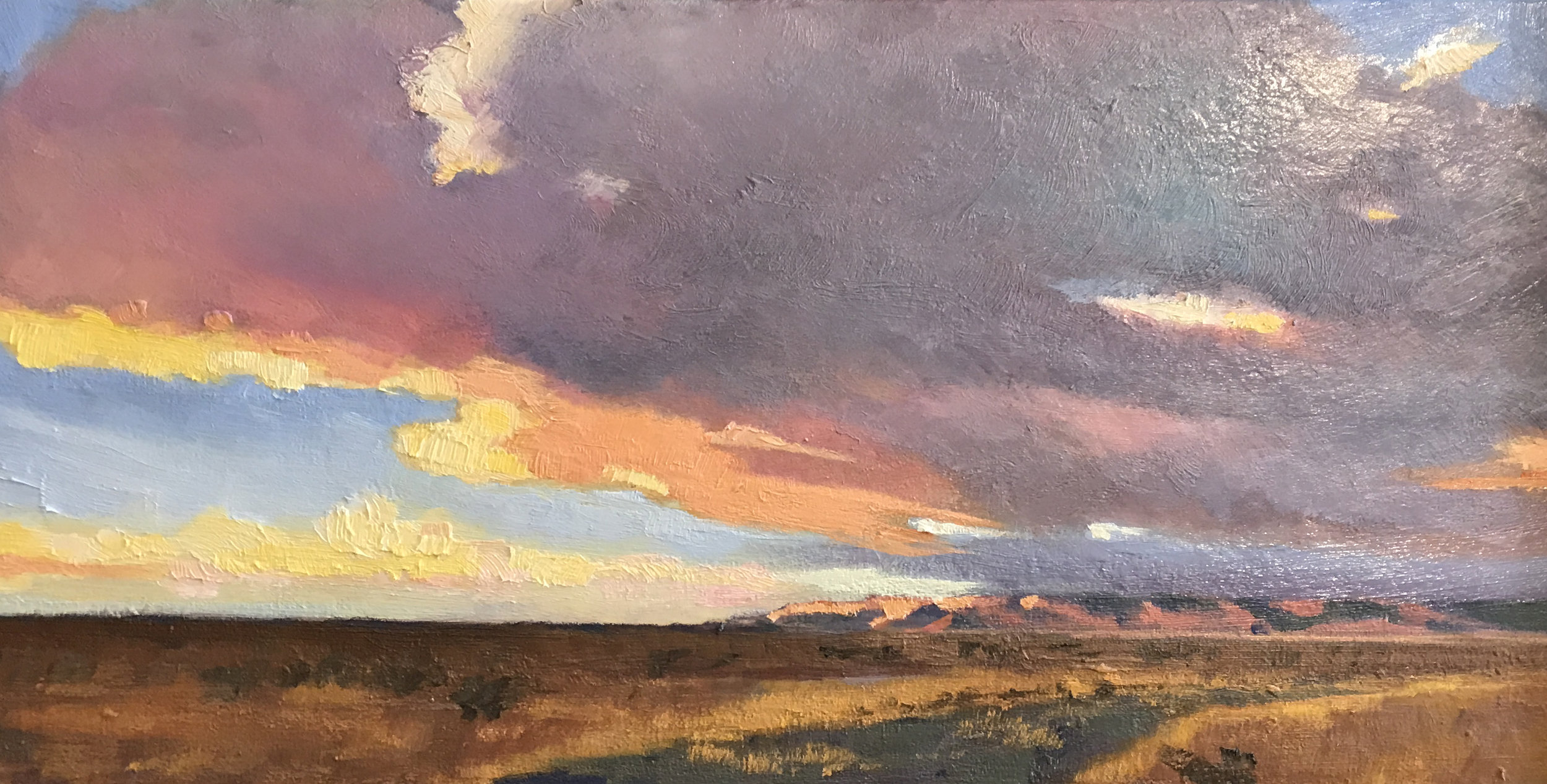Sunrise, Surprise Valley 8x16, oil, druian.jpg