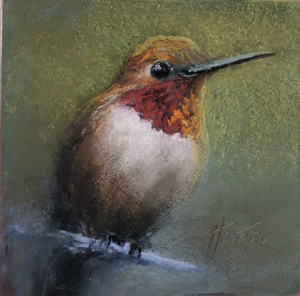 """Eager Rufous Hummingbird"" 8x8, Pastel on copper $525"