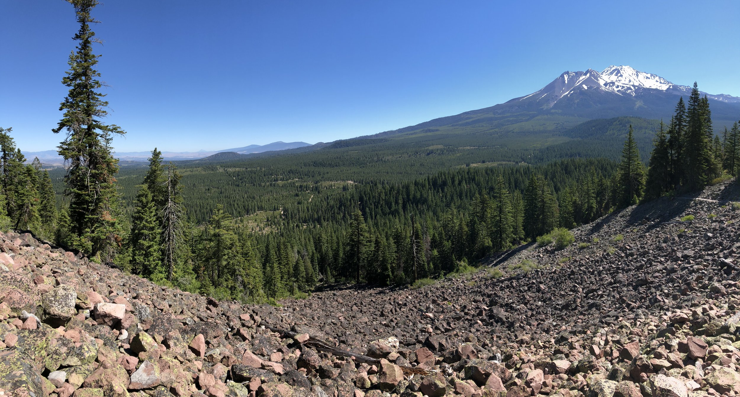 Mt. Shasta from the trail up Black Butte.
