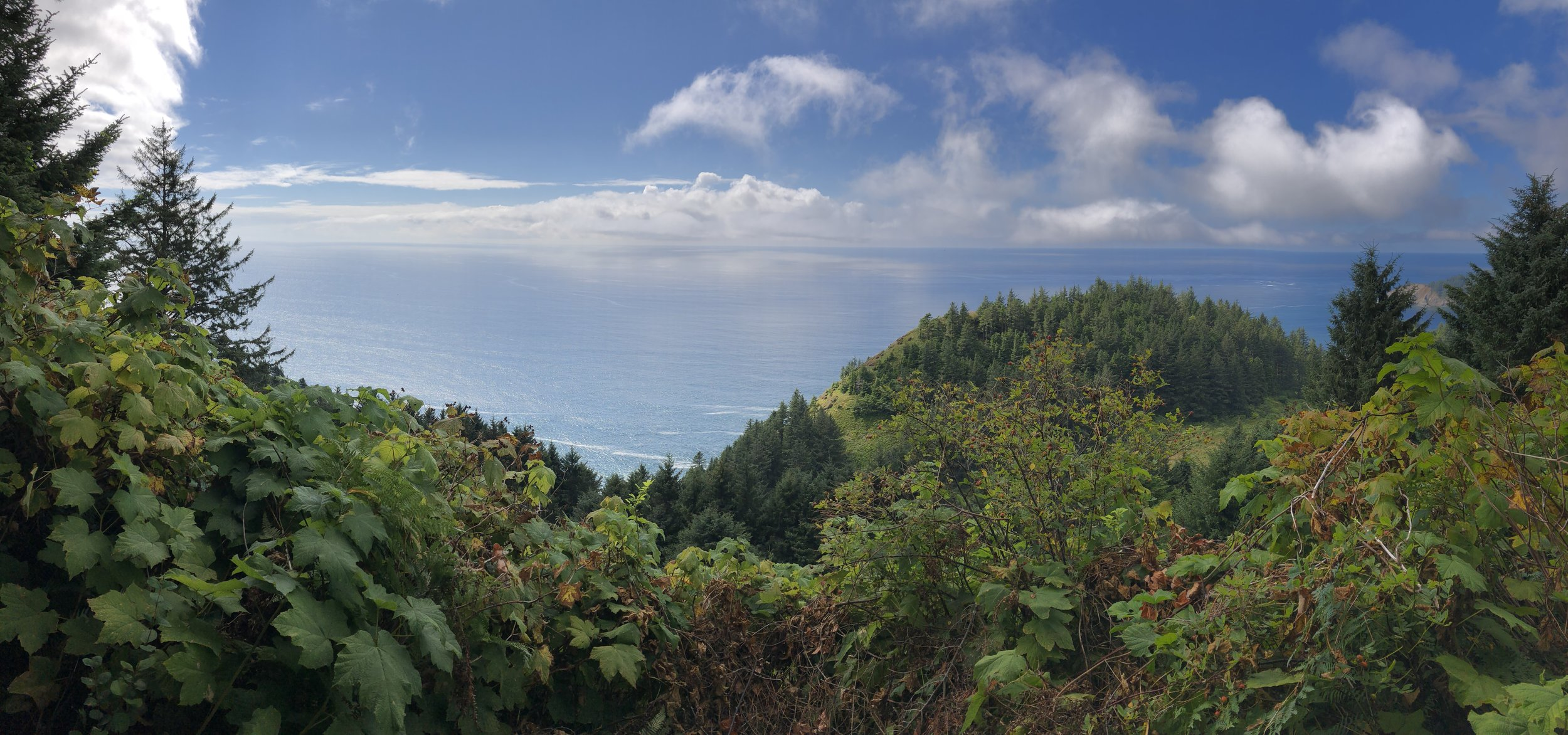 Ocean view just above US 101.