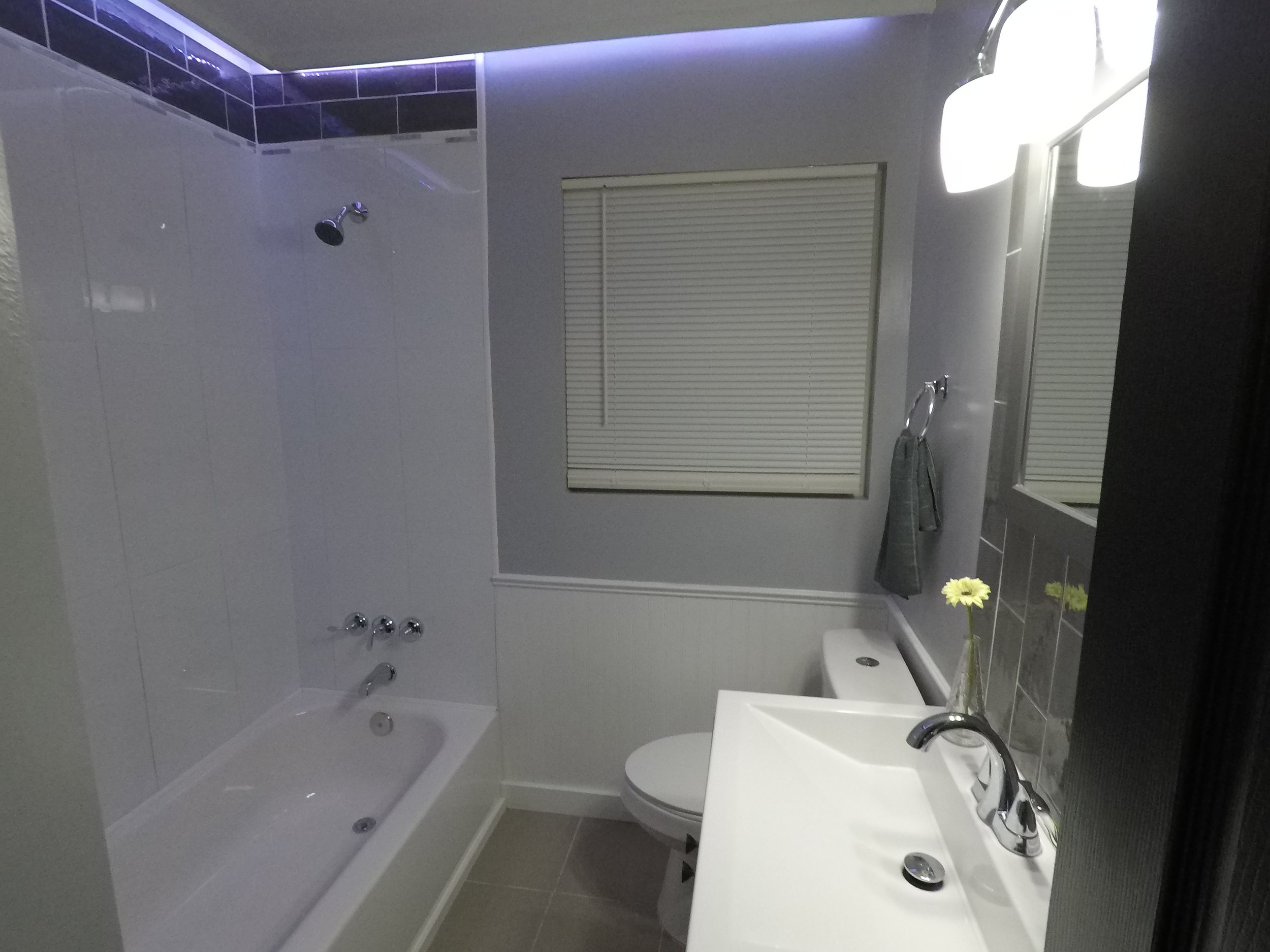 hall bath led wide 2.JPG
