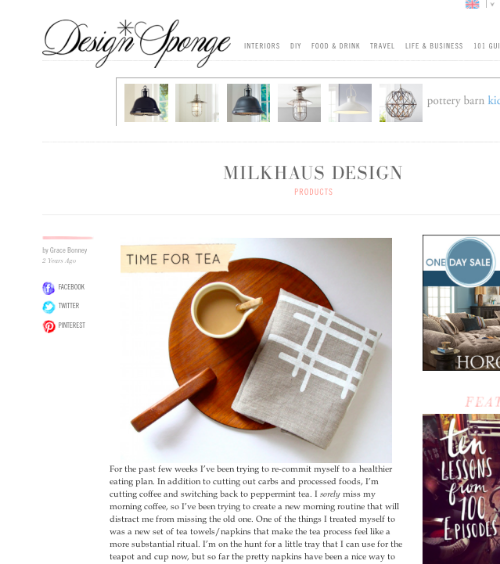 designsponge feature