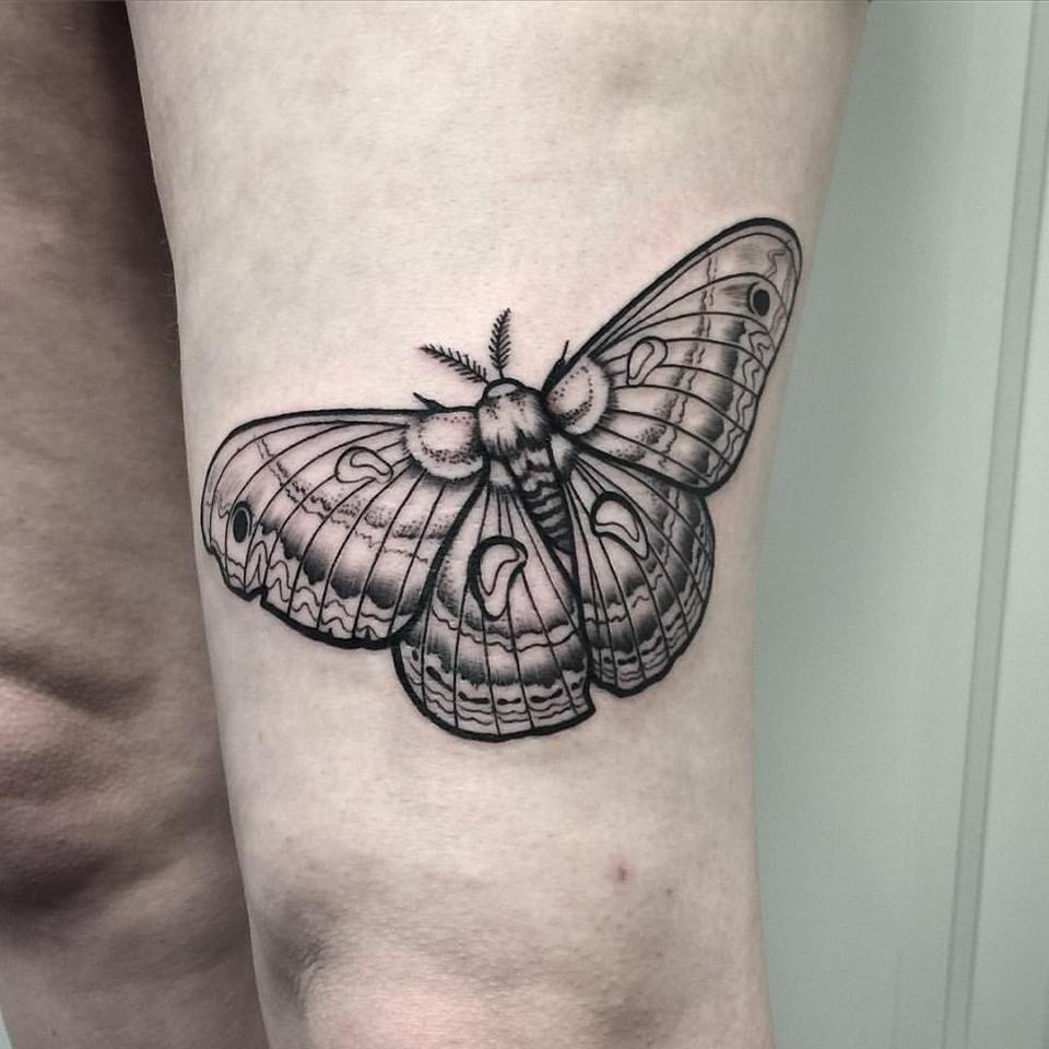 Blackwork Moth Tattoo by David Mushaney