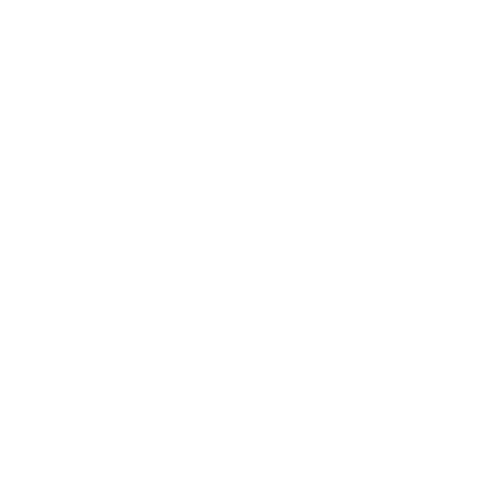 the new york times.png