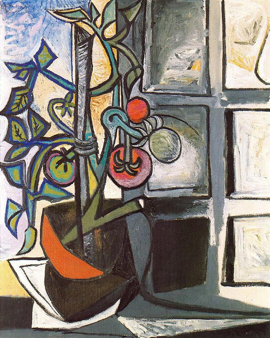 Pablo Picasso. Tomato Plant , 1944