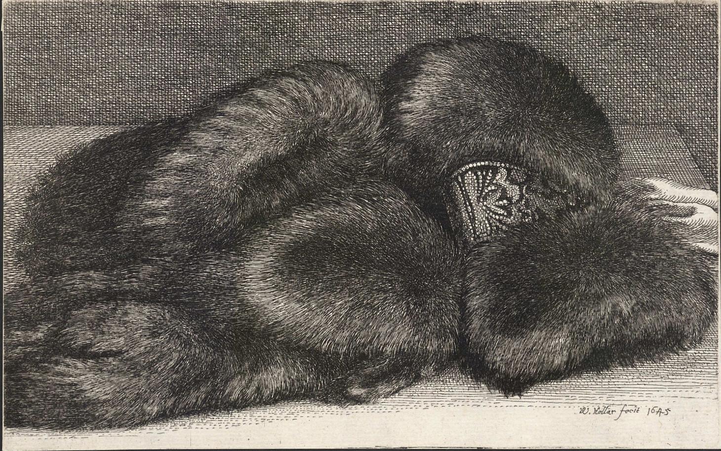 Wenceslaus Hollar.  Fur Muff with Brocade , c. 1645