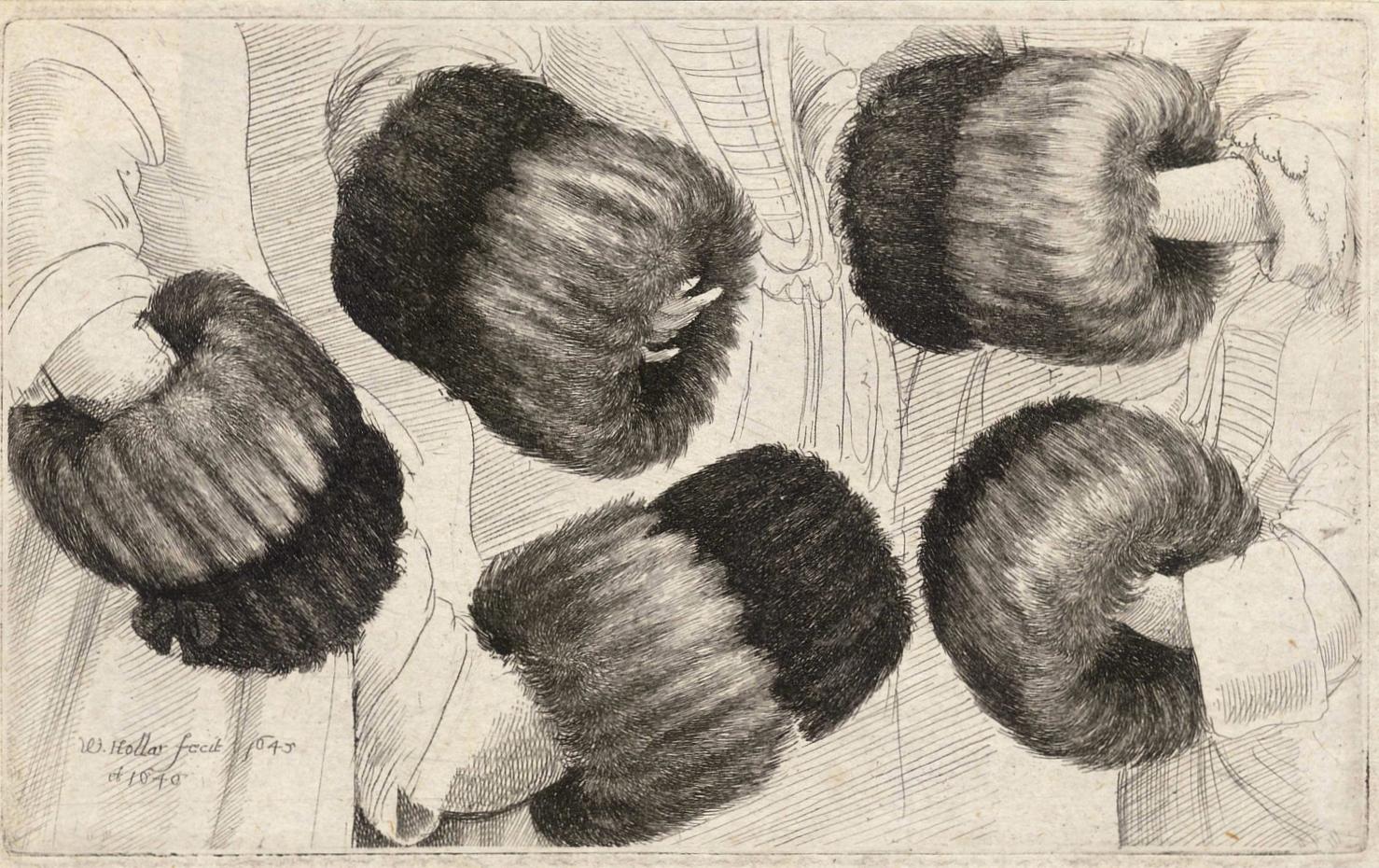 Wenceslaus Hollar.  A Muff in Five Views , 1645-1646