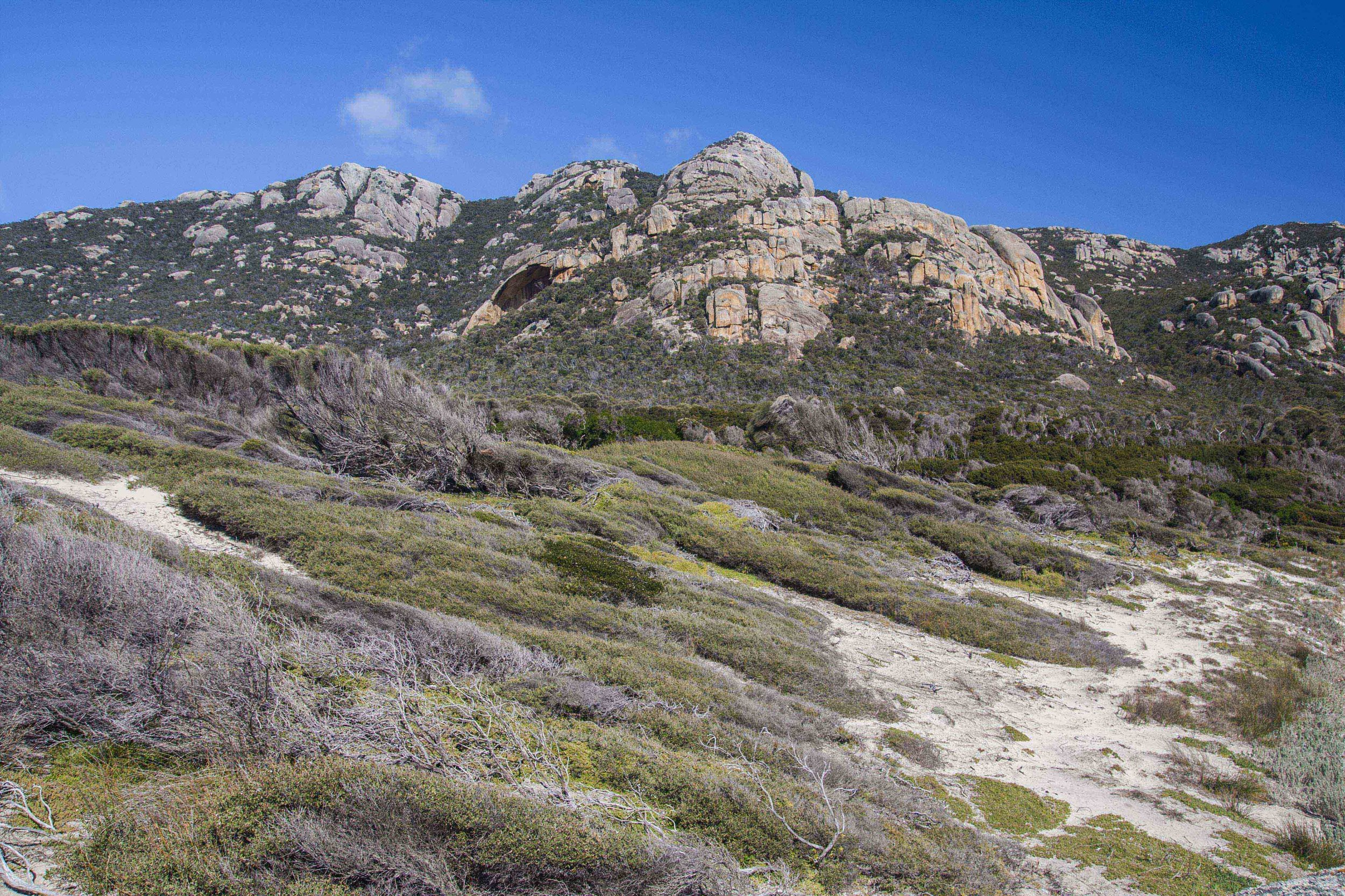 Coastal scrub vegetation and rocky Mount Killiecrankie on Flinders Island, Tasmania