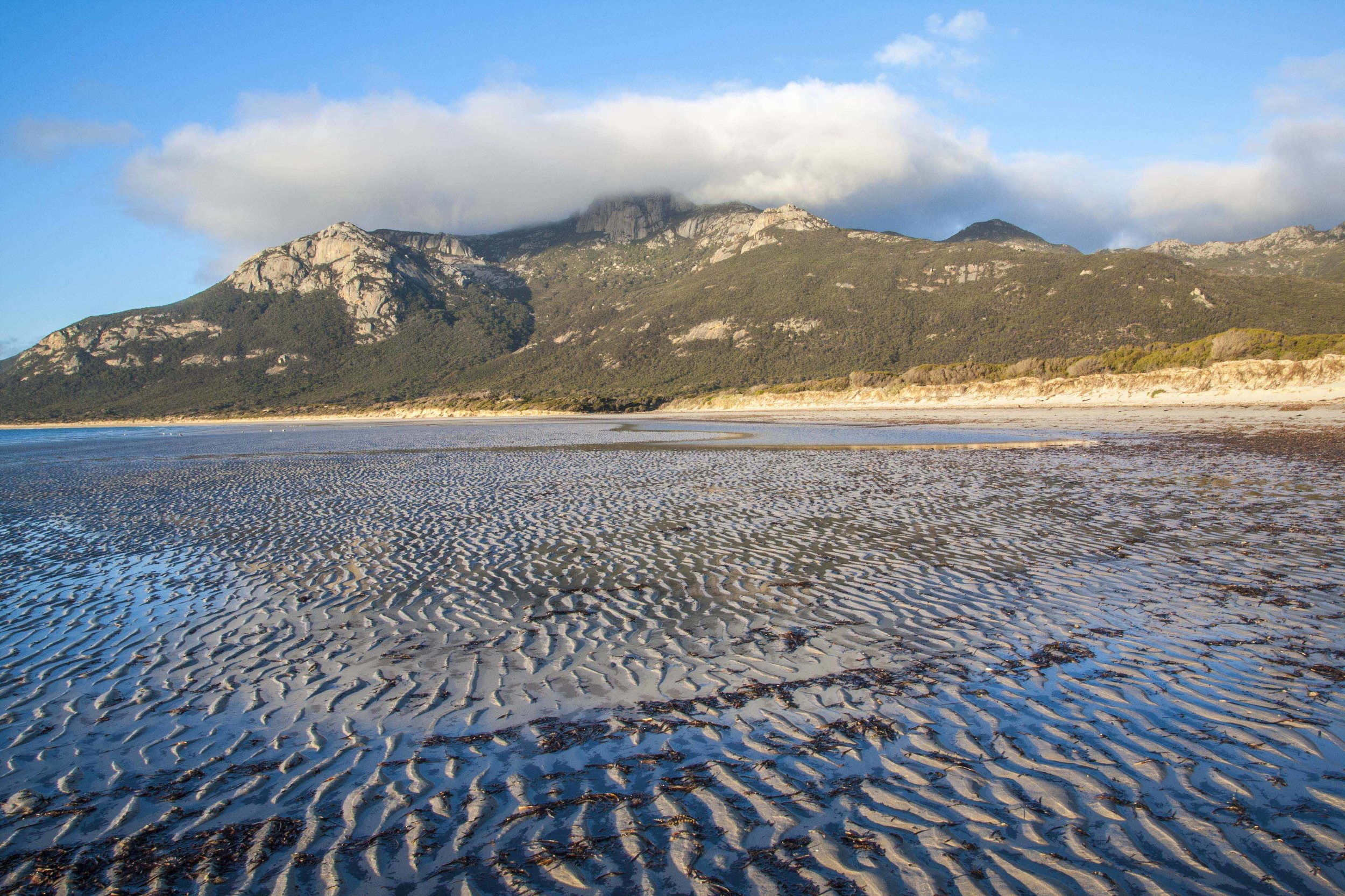 Strzelecki National Park, with Strzelecki Peak shrouded in cloud, viewed from the beach north of Trousers Point at low tide.