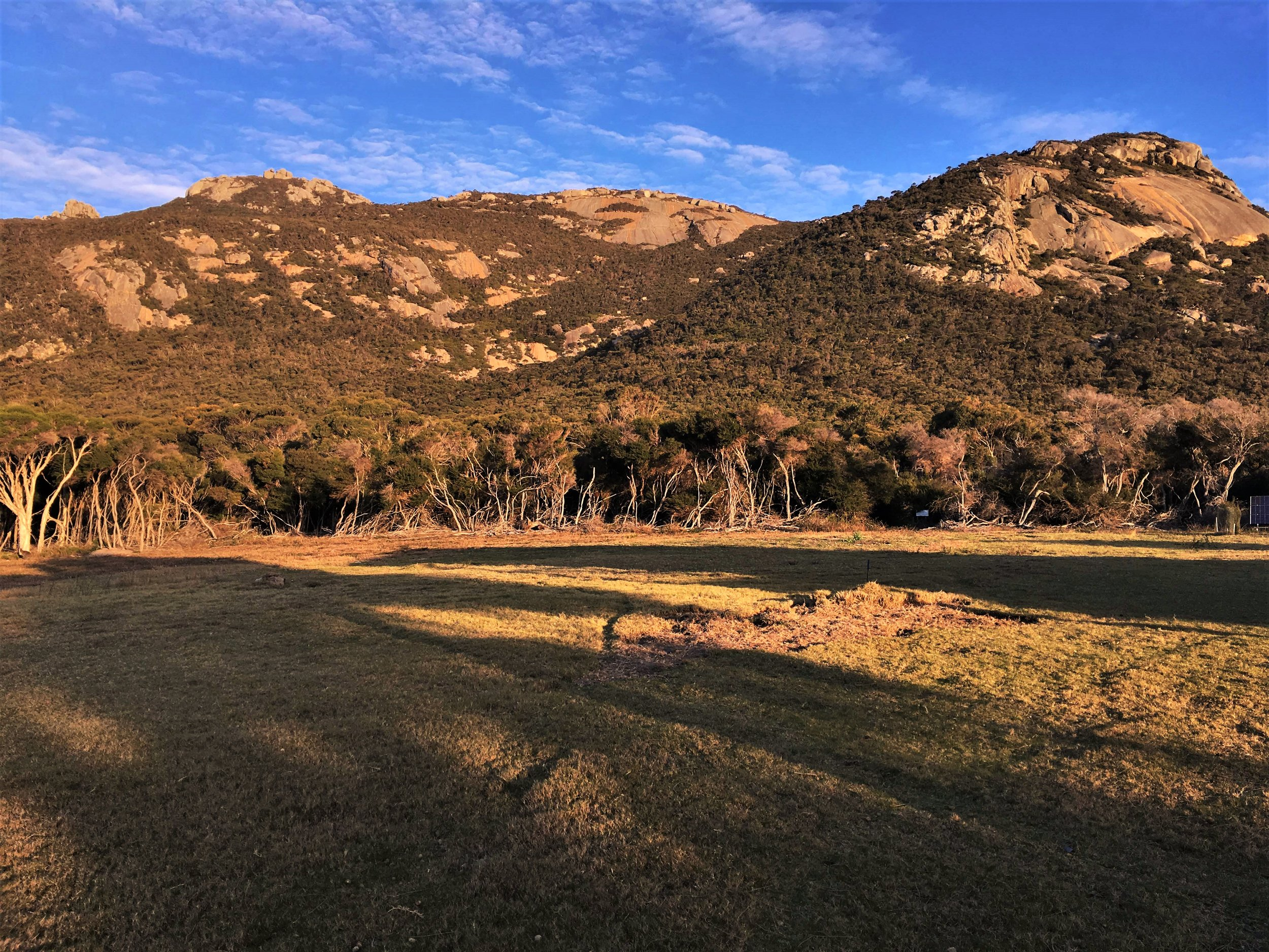 The National Park just before sunset, viewed across the lawn at Mountain Seas.
