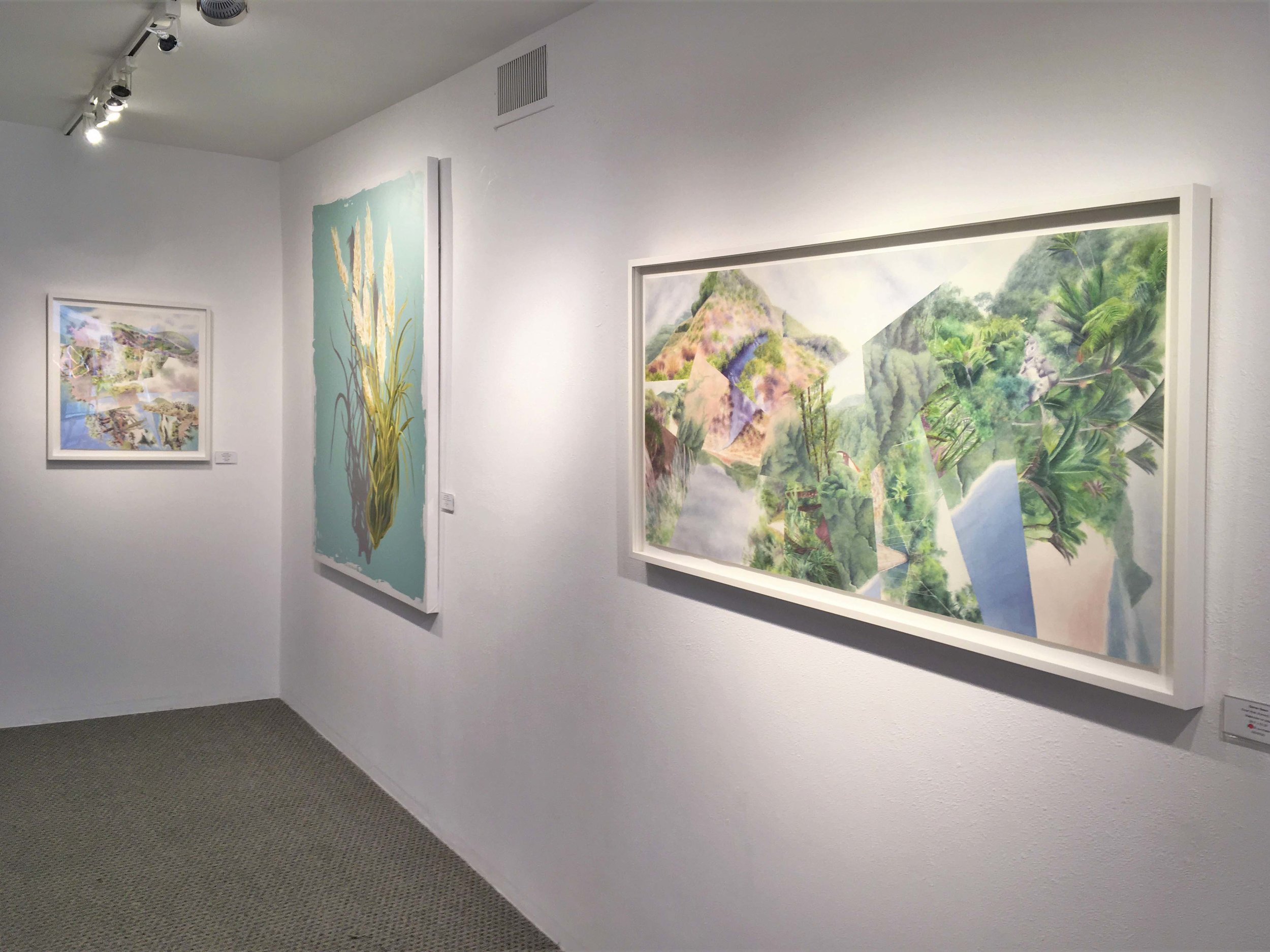 "Watercolor paintings by Darren Sears and Veronica Diament at the art exhibition ""Ecological Niche"" at Hang Art Gallery in San Francisco"