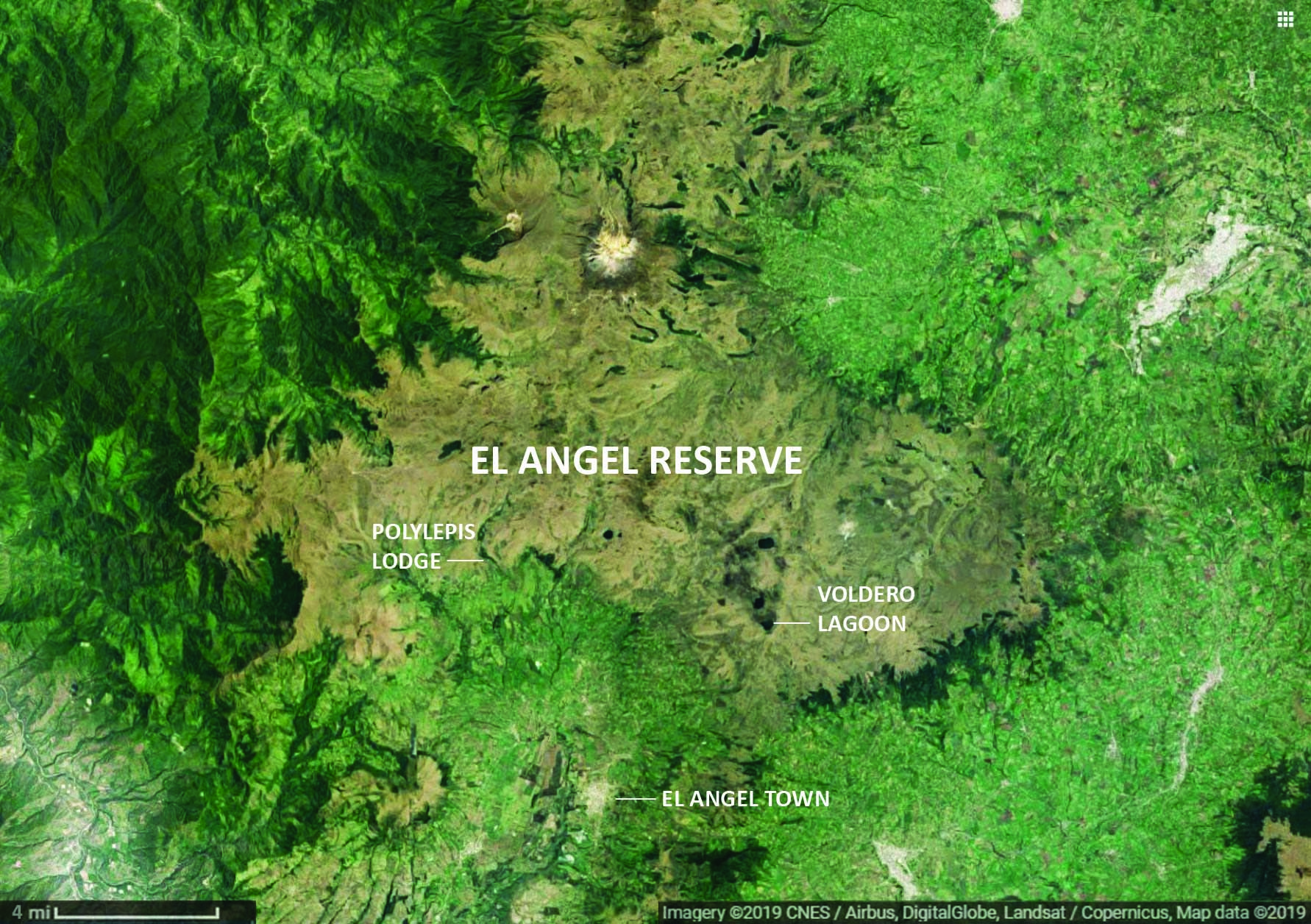 Satellite view of El Angel Ecological Reserve, Ecuador
