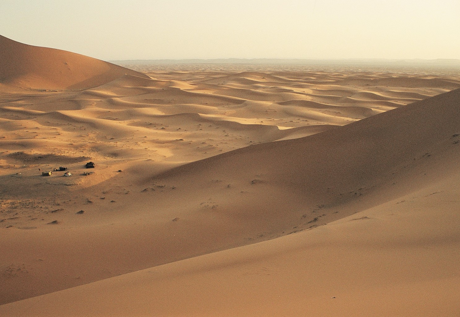 "Erg Chebbi in Morocco. The Sahara was once lush, likely desertified in part by overgrazing. How ""wild"" does that make it?"