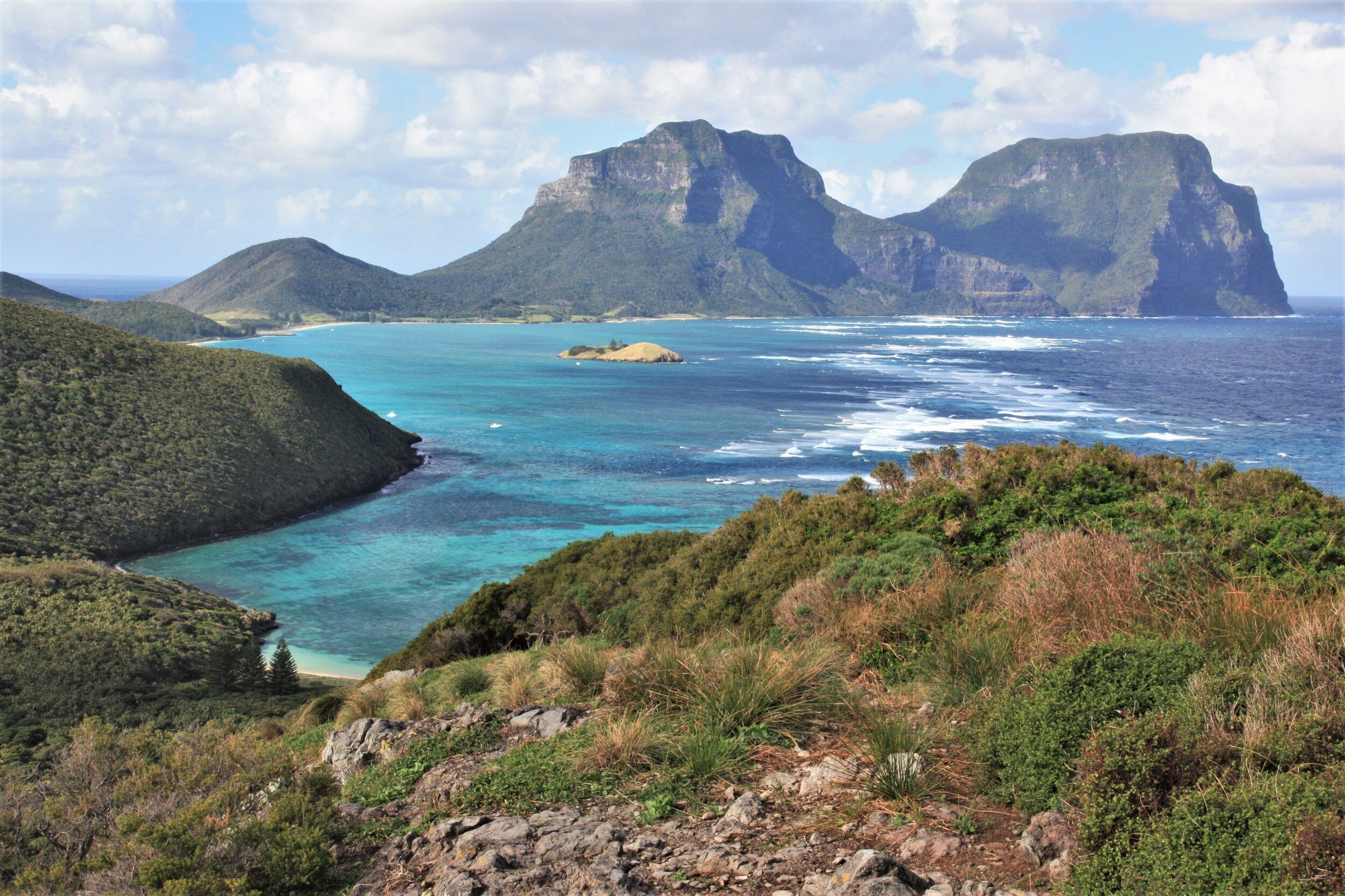 Low, scrubby lowlands of Lord Howe Island, Australia, with Mt. Gower (far right) in the distance across the lagoon.