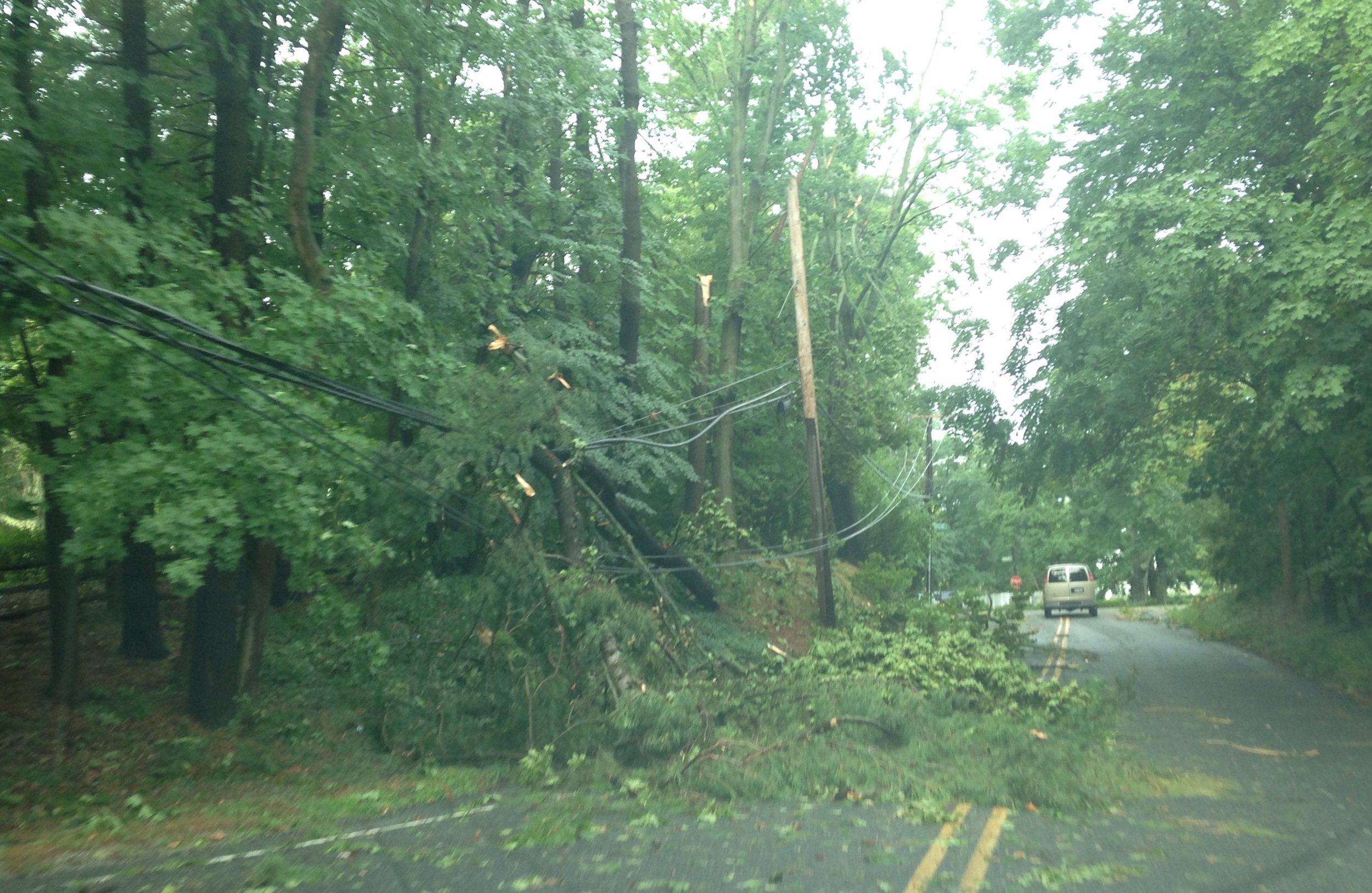 Downed Electric Wires