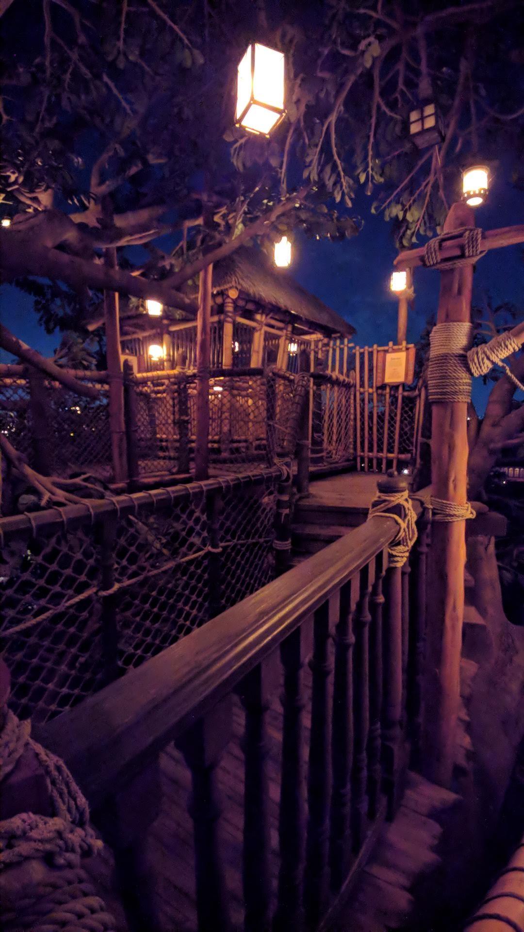 Swiss Family Treehouse - The Enchanted Tiki Room - Tokyo Disneyland