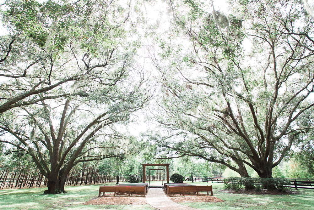 club lake plantation wedding.jpg