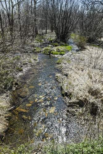 Furnace Stream flows into Maiden Creek which flows into Ontelaunee Lake which is the drinking water supply for the City of Reading in Windsor Township. Streams are a key part for nitrogen wastes from land to be filtered and changed into harmless nitrogen gas.  Berks Nature and Stroud Water Research Center and other groups are working with farmers in the region to protect water resources and reducing pollutants on farms.
