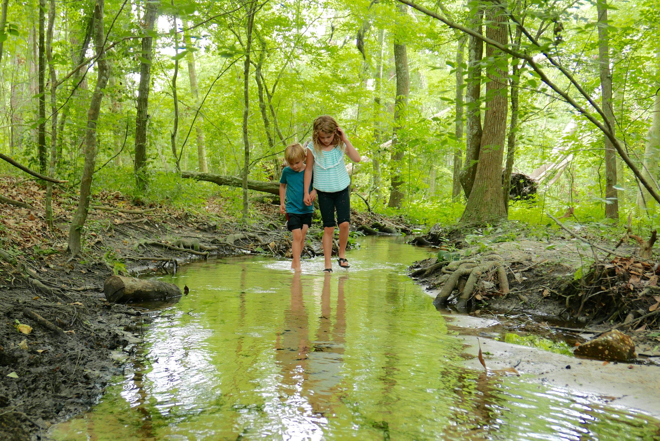 kids in the stream.jpg