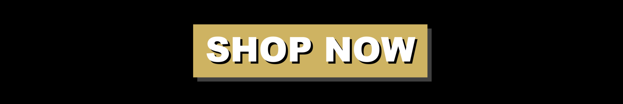 Shop Now (2).png