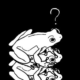 El sapo anfibio