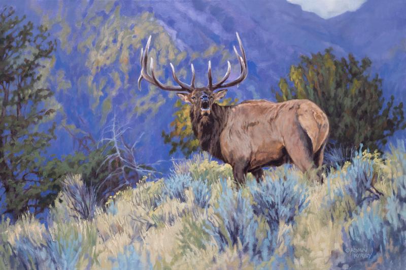 Original Elk Oil Painting The Defender by Ryan Kirby