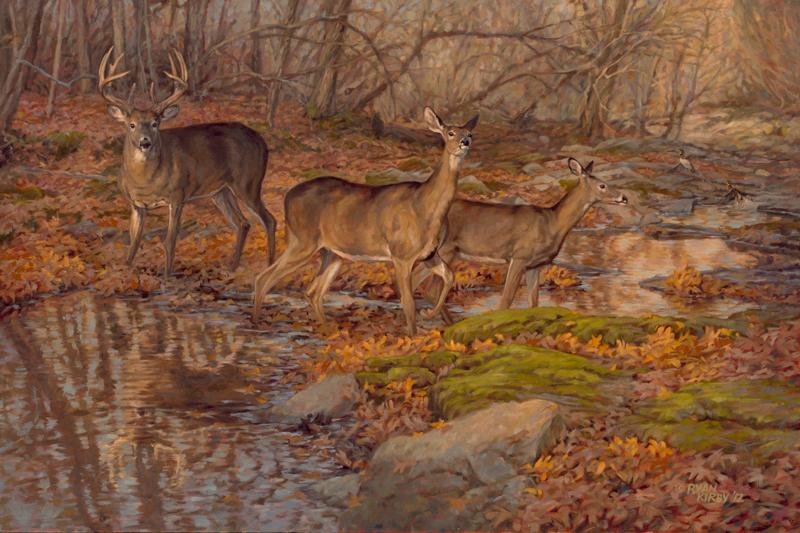 ryan_kirby_original_whitetail_deer_painting_autumn_reflections_qdma