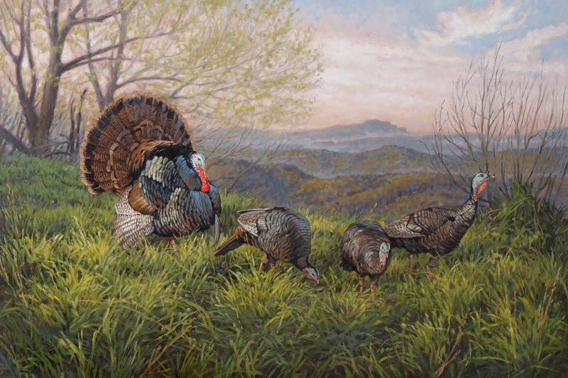 ryan_kirby_original_strutting_wild_turkey_painting_north_carolina_grandfather_gobbler