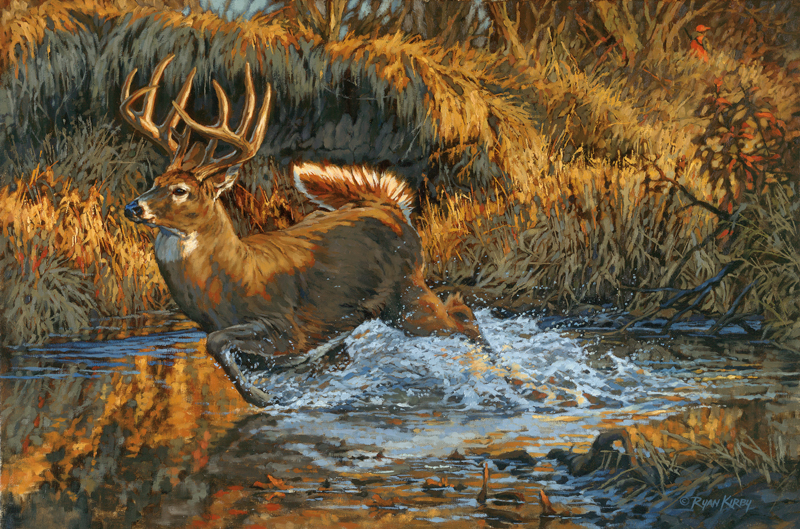 Original White-tailed Deer Painting The Slip by Ryan Kirby
