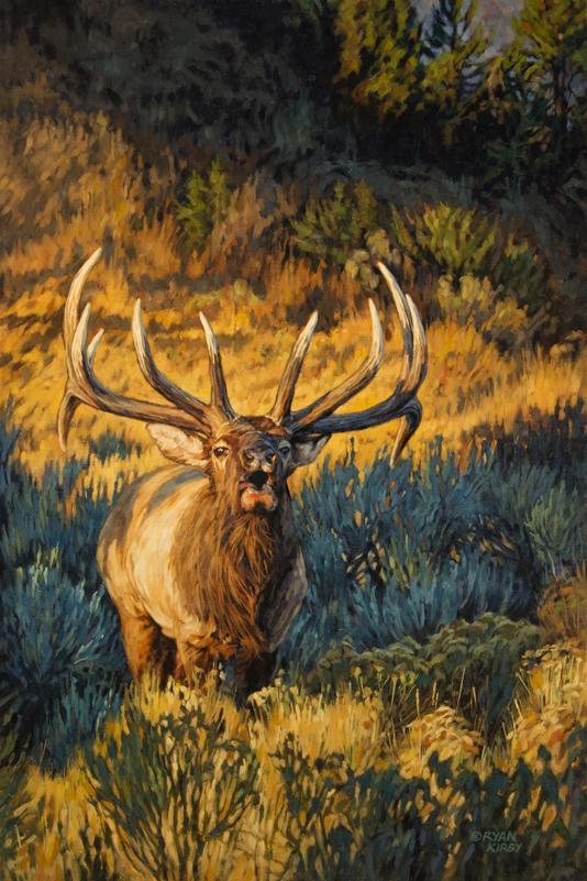 Copyright-Ryan-Kirby-Bugling-Elk-Summit-Sound-Off.jpg