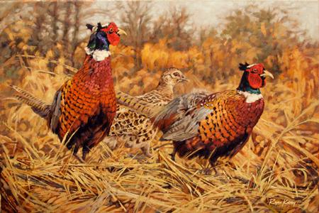 Ryan-Kirby-Pheasant-Painting-Ringneck-Refuge.jpg