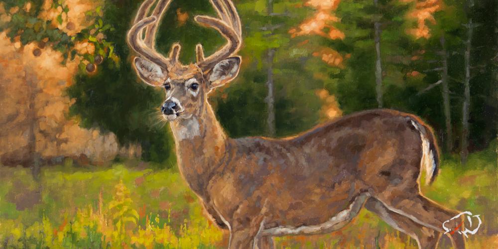 Ryan-Kirby-Deer-Southern-Gentleman.jpg