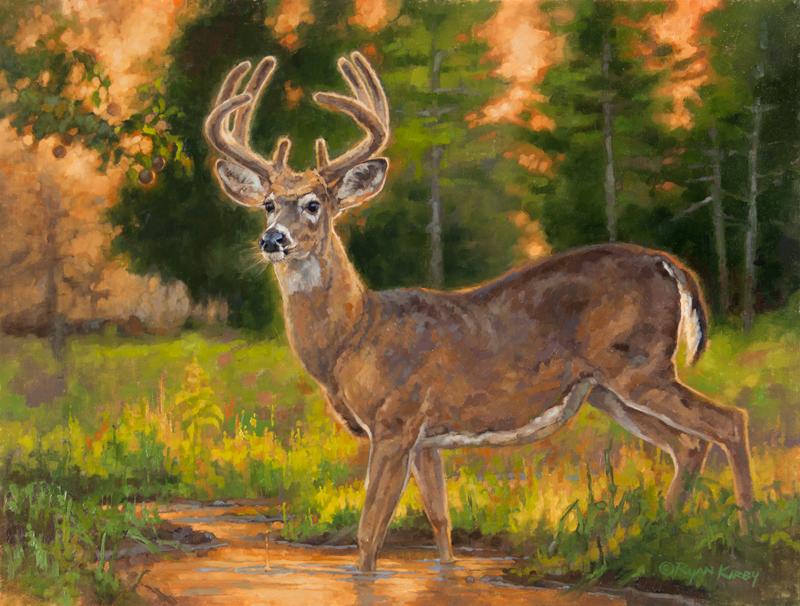 ryan_kirby_original_whitetail_deer_painting_southern_gentleman