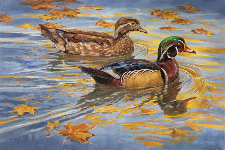 Copyright-Ryan-Kirby-Wood-Duck-Original-Oil-Painting-Drift-Wood-30x20.jpg