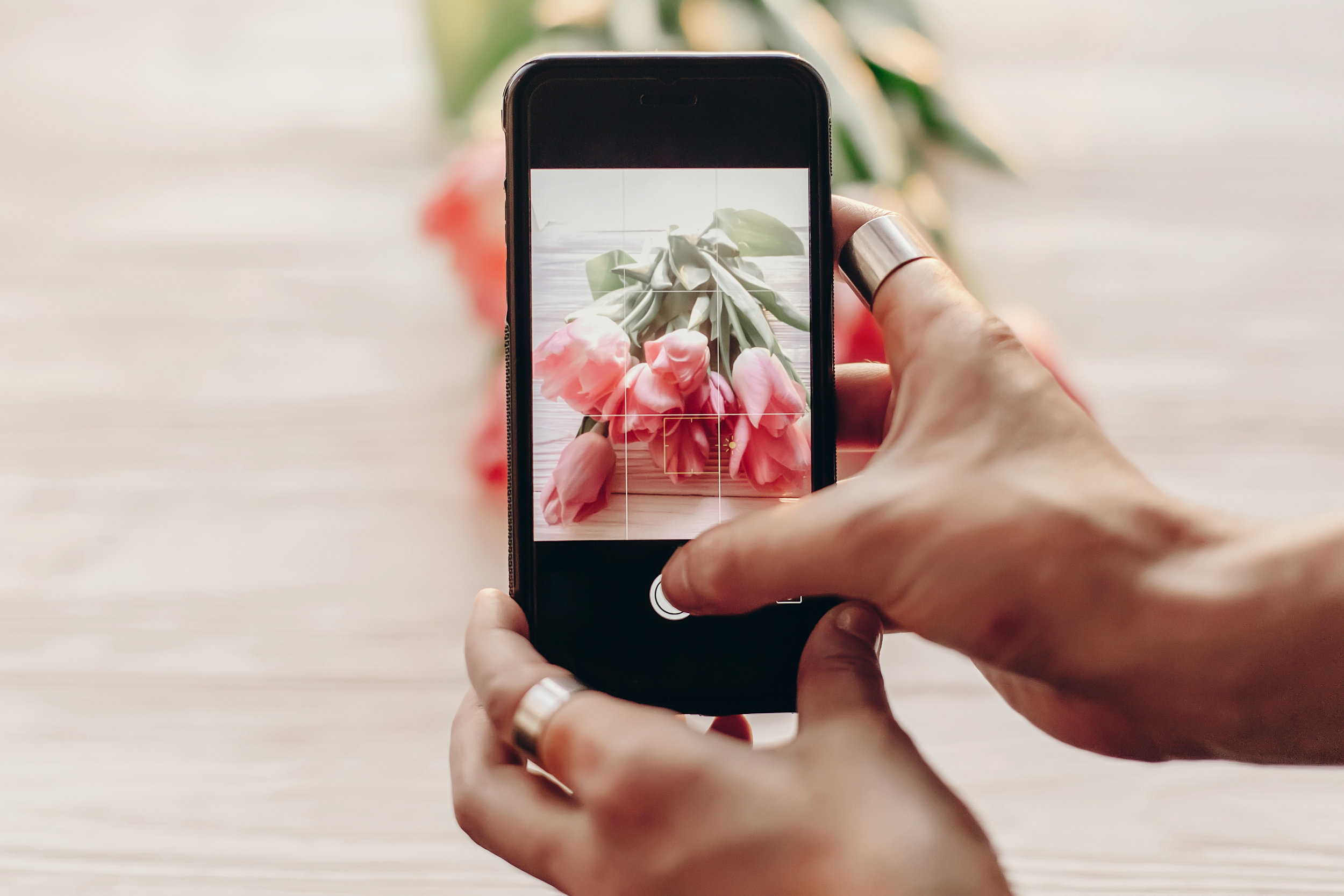 Copy of instagram photographer blogging workshop concept. hand holding phone and taking photo of stylish flowers. pink tulips on white wooden rustic background.space for text. hello spring