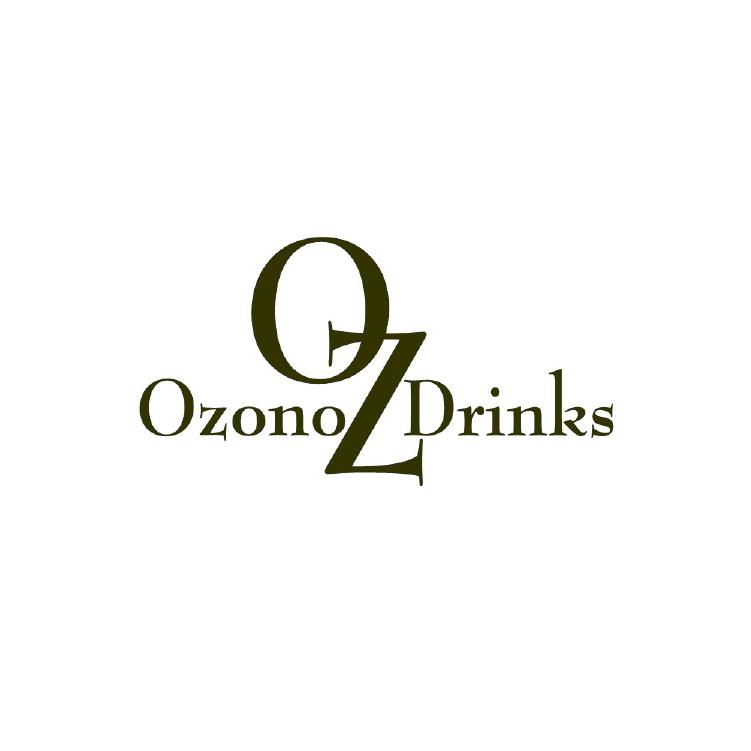 Alieska Robles - Photographer - Creative Studio - London Ontario - Ozono Drinks Wine Argentina.png