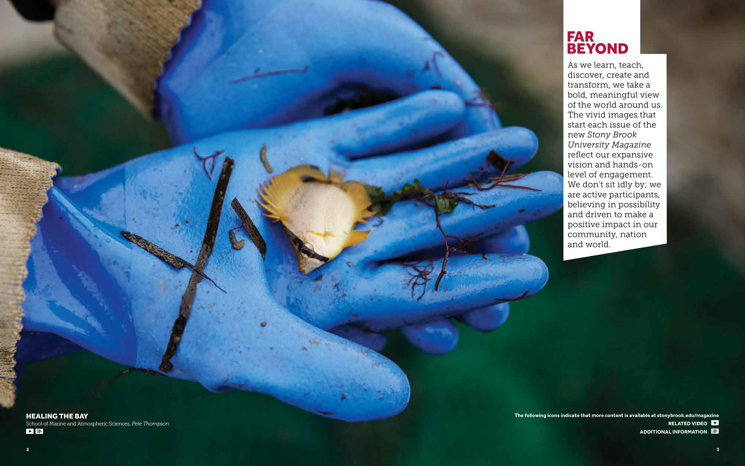 SBU_Magazine_Issue01_Final-3.jpg