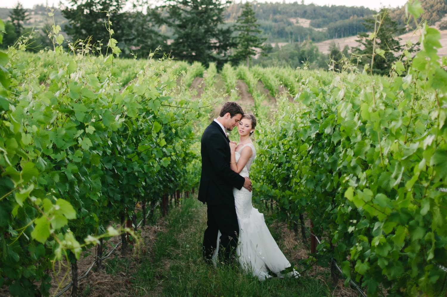 zenith vineyard wedding christa taylor_0587.jpg