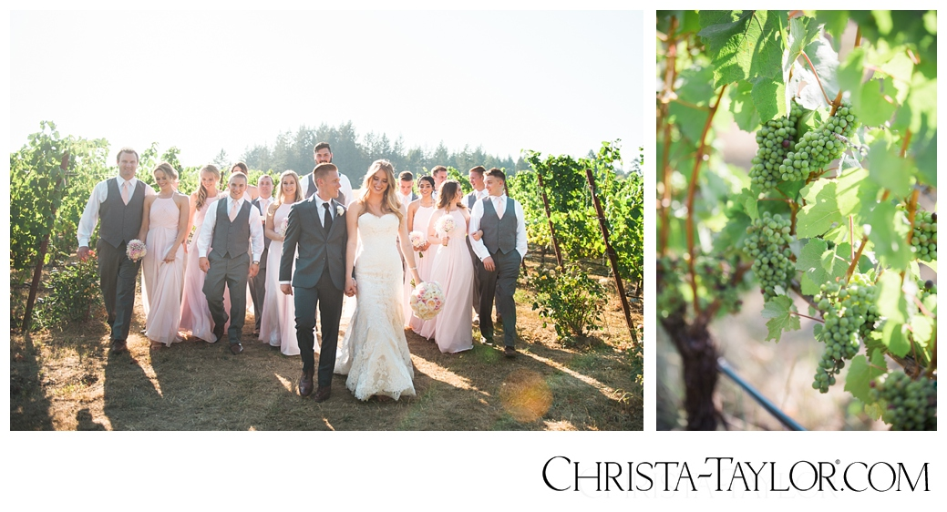 zenith vineyard wedding christa taylor_1019.jpg