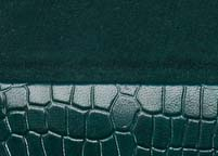 Crocodile Dark Green dark green.jpg