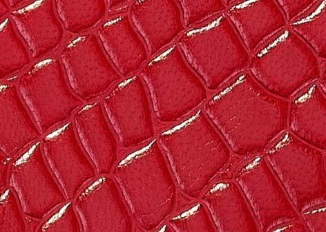 CROCO RED detail.jpg