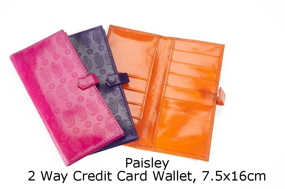 Paisley 2WCCW.jpg