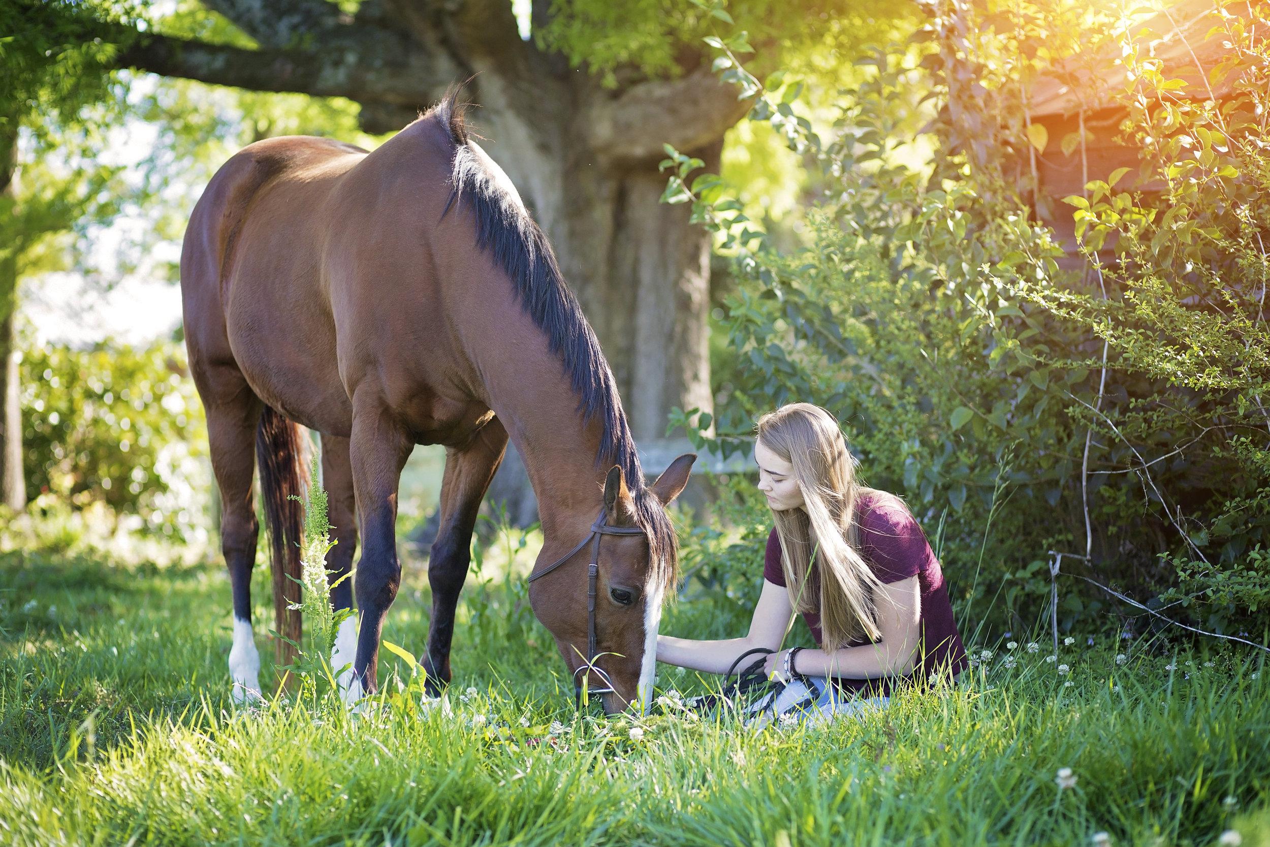 senior portraits horse pickens sc