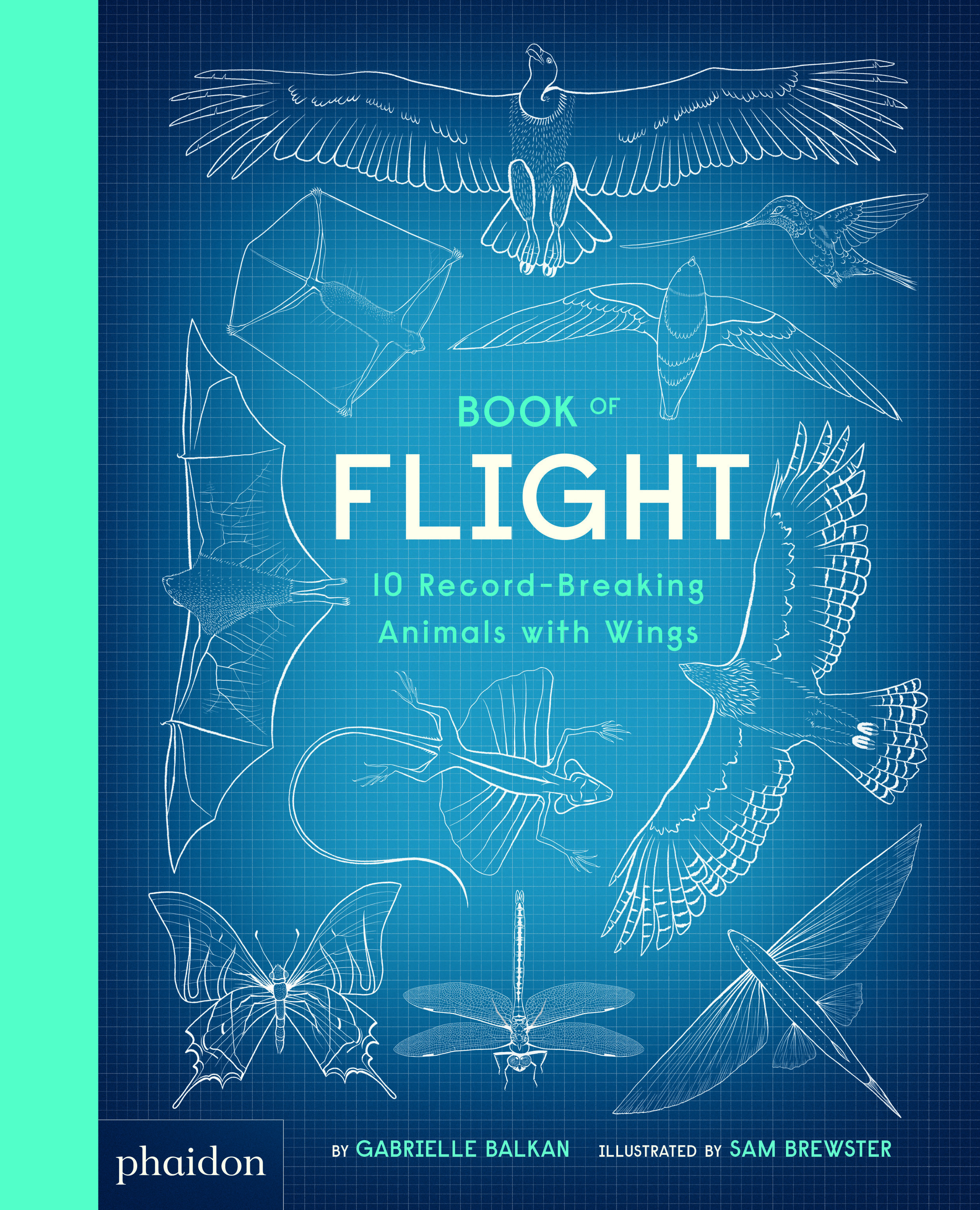 Gabrielle Balkan _Book of Flight_Cover.jpg