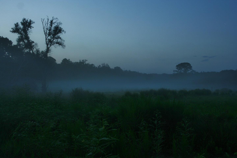Dawn at Guana.jpg
